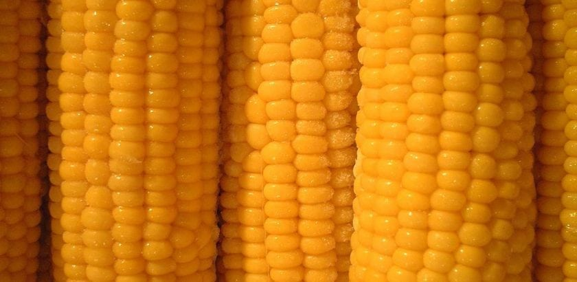 Relationships - From The Male Perspective  Buttered Corn Day